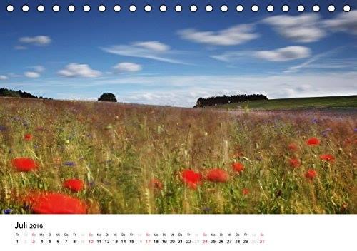 Kalender Usedomfotos 2016 - Mohnfeld bei Pudagla