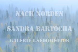 Sandra Baema Finnland